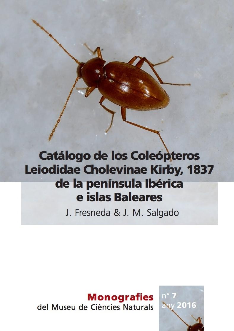 TROGLOCHARINUS ESPANOLI ROSELLI - FOTOGRAFIA : AGUSTI MESEGUER