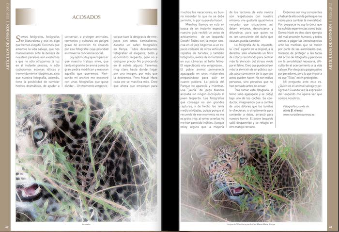 IRIS 2012 Nº19,  AEFONA'S annual magazine