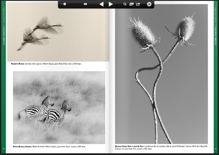 Black&White, my photo in this issue