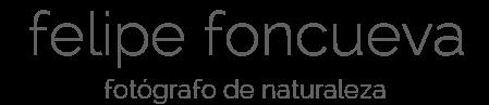felipe foncueva - fotógrafo de naturaleza