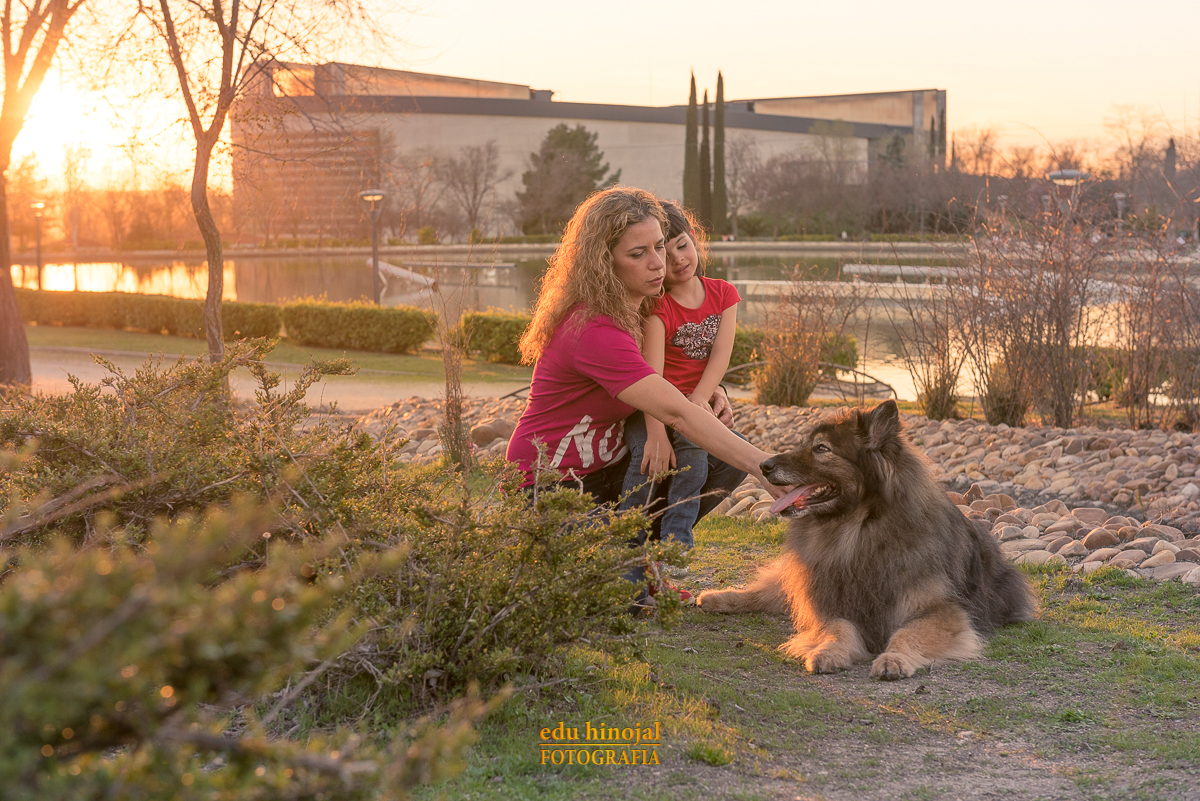Sesión de fotos con mascotas