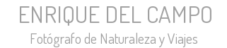 ENRIQUE DEL CAMPO - Fotógrafo de Naturaleza y Viajes