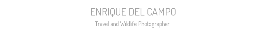 ENRIQUE DEL CAMPO - Travel and Wildlife Photographer