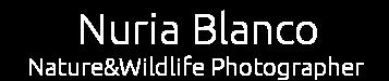 Nuria Blanco  - Nature&Wildlife Photographer