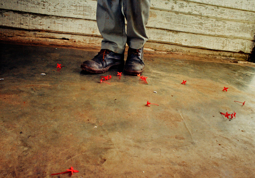 cuban photography of a shoes with flowers by Ernesto Bazan