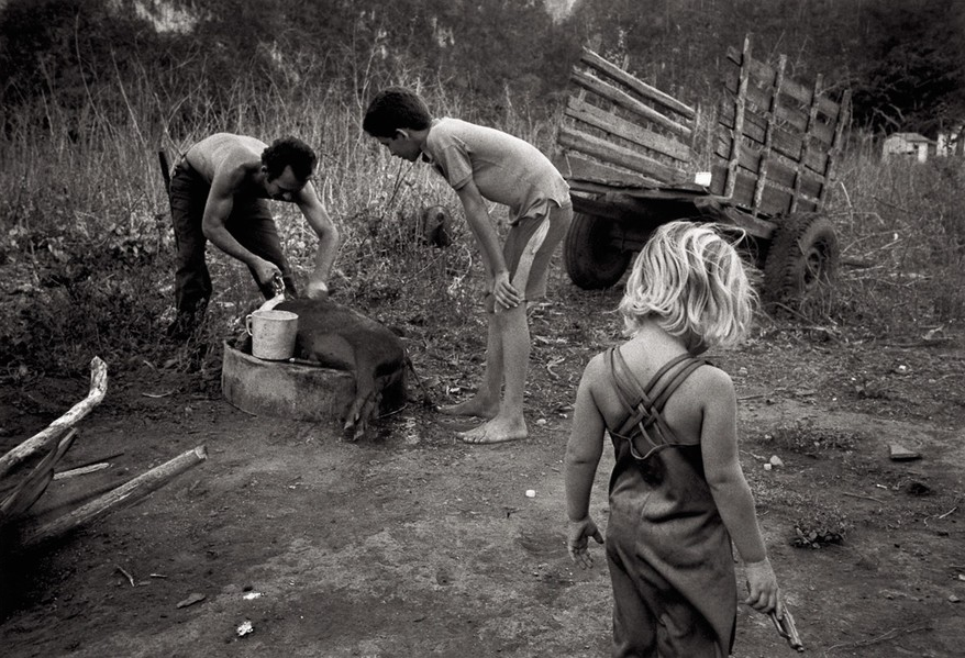 people in the cuban countryside by Susan Bank